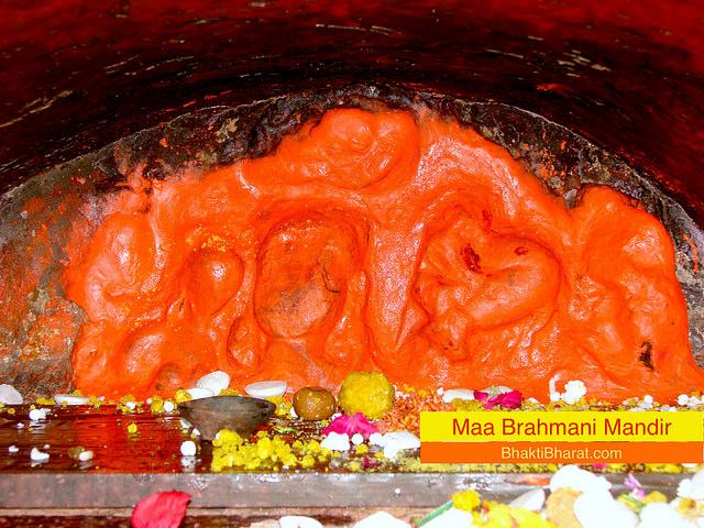 देवी भागवत के अनुसार वर्ष में चार बार नवरात्रि आते हैं और जिस प्रकार नवरात्रि में देवी के नौ रूपों की पूजा की जाती है, ठीक उसी प्रकार गुप्त नवरात्रि में दस महाविद्याओं की साधना की जाती है। 12-21 फरवरी 2021