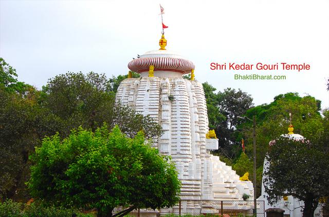 श्री केदार गौरी मंदिर (Shri Kedar Gouri Temple) - Old Town Bhubaneswar, Odisha - 751019 Bhubaneswar Odisha