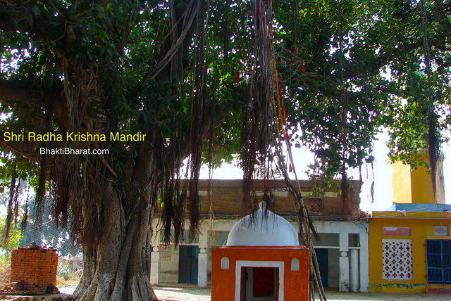 श्री राधा कृष्ण मंदिर (Shri Radha Krishna Mandir) - सैनावली (Sainavali or Sehnaoli), Firozabad Uttar Pradesh - 201010